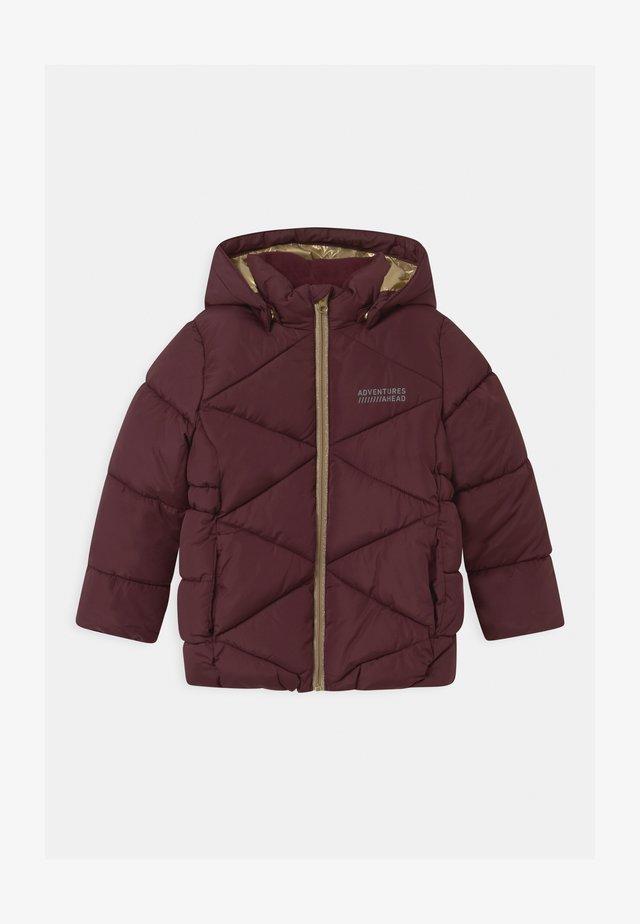 NKFMILTON  - Winter jacket - winetasting
