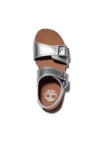 Timberland - CASTLE ISLAND - Walking sandals - silver - 1