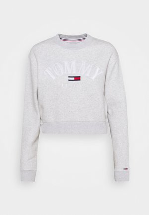 CROP COLLEGE LOGO - Sweatshirt - silver grey heater