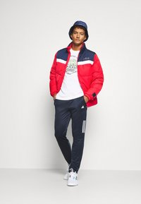 Fila - LANDOLF PUFFED JACKET - Träningsjacka - true red/black iris/bright white - 1