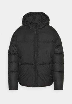 PULA HOODED PUFFER JACKET UNISEX - Veste d'hiver - black