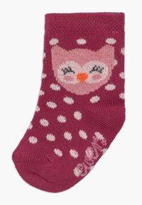 Ewers - BABYSOCKS OWL 6 PACK - Socks - marone/latte - 1