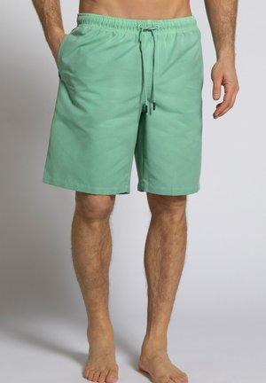 Zwemshorts - tannengrün