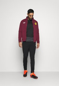Puma - TEAMGOAL TRAINING  - Fleece jumper - black/asphalt - 1
