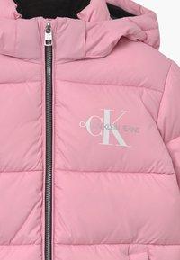 Calvin Klein Jeans - ESSENTIAL PUFFER  - Winter jacket - pink - 4