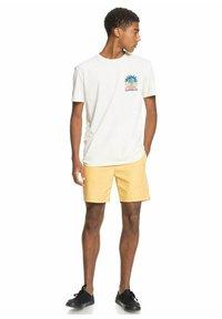 Quiksilver - ISLAND PULSE - Print T-shirt - snow white - 1
