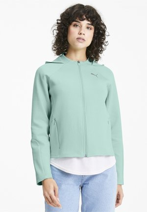 EVOSTRIPE - Training jacket - mist green
