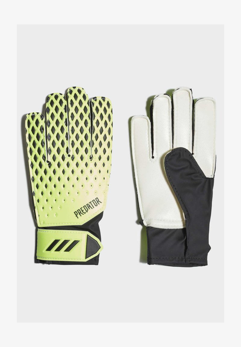 adidas Performance - PREDATOR TRAINING GOALKEEPER GLOVES - Handschoenen - green