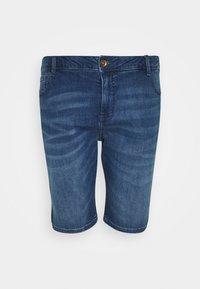 Cars Jeans - LODGER PLUS - Denim shorts - stone used - 0