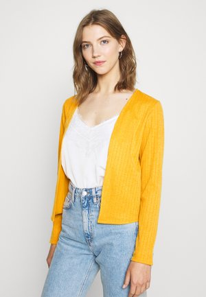IHCILO - Cardigan - golden yellow