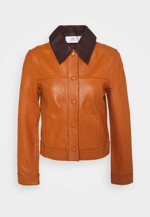 PANNEL JACKET - Skinnjacka - congac brown