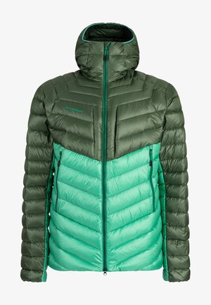 BROAD PEAK  - Winter jacket - deep emerald-woods