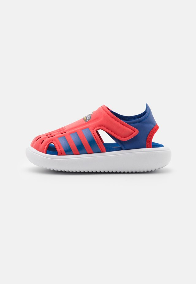 WATER UNISEX - Chanclas de baño - vivid red/team royal blue/footwear white