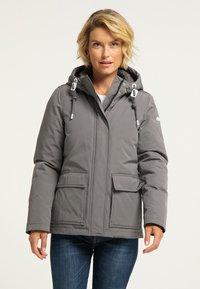 ICEBOUND - Winter jacket - grau - 0