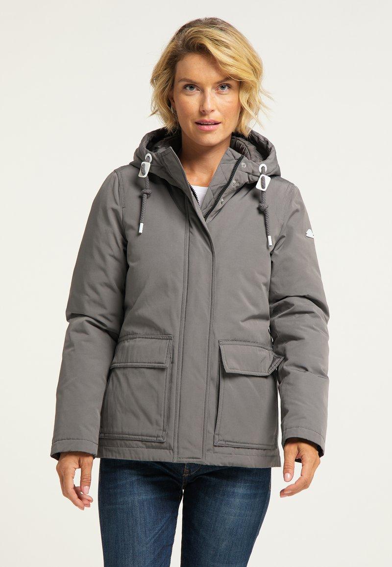 ICEBOUND - Winter jacket - grau
