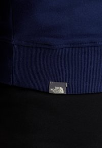 The North Face - DREW PEAK  - Bluza z kapturem - montague blue - 6