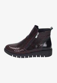 Piazza - Ankle boots - bordeaux - 0