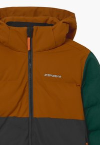 Icepeak - LOUDON UNISEX - Snowboardová bunda - cognac - 3