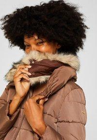 Esprit Collection - MIT 3M® THINSULATE-FÜLLUNG - Winter jacket - brown - 3