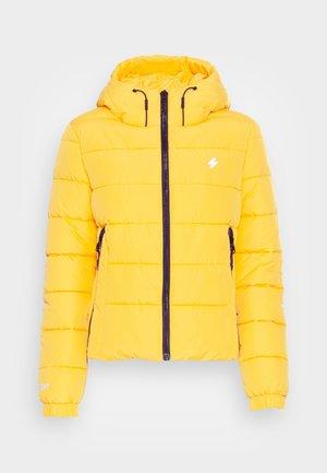 HOODED SPIRIT SPORTS PUFFER - Winter jacket - nautical yellow