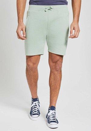 Shorts - miami pistache