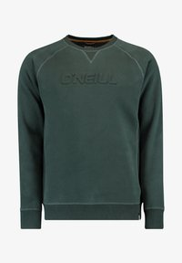 CREWS LOGO CREW NECK - Sweatshirt - panderosa pine