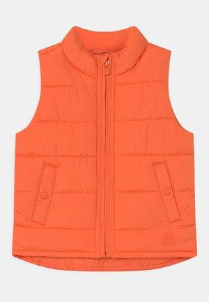 TODDLER BOY WARMEST - Waistcoat - sport orange