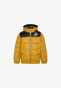 Pepe Jeans - CAS - Winter jacket - colemans gelb - 0