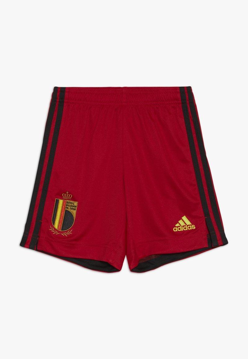 adidas Performance - BELGIUM RBFA HOME SHORTS - Korte broeken - collegiate red