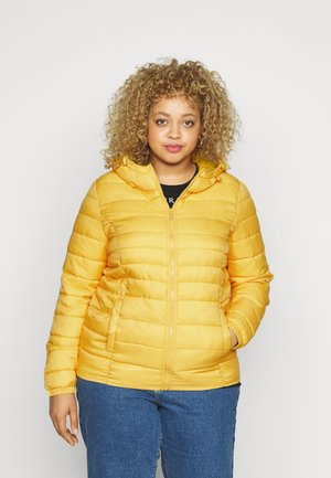 CARTA HOOD JACKET - Light jacket - lemon