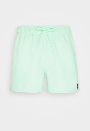 VOLLEY - Swimming shorts - light green
