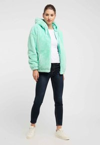taddy - Winter jacket - mint
