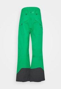 State of Elevenate - MEN'S BACKSIDE PANTS - Snow pants - green - 7