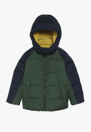 BOY WARMEST - Winter jacket - green gables