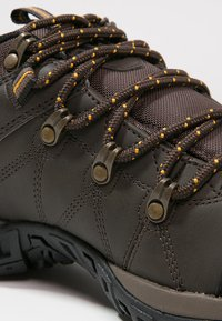 Columbia - PEAKFREAK VENTURE WP - Hiking shoes - dark brown - 5