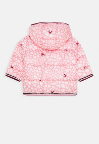 Tommy Hilfiger - BABY PRINTED PUFFER JACKET - Winter jacket - pink - 1