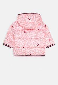 Tommy Hilfiger - BABY PRINTED PUFFER JACKET - Zimní bunda - pink - 1