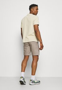 The North Face - CARGO - Shorts - mineral grey - 2