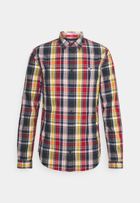 Tommy Jeans - SEASONAL CHECK SHIRT - Camisa - multi-coloured - 4