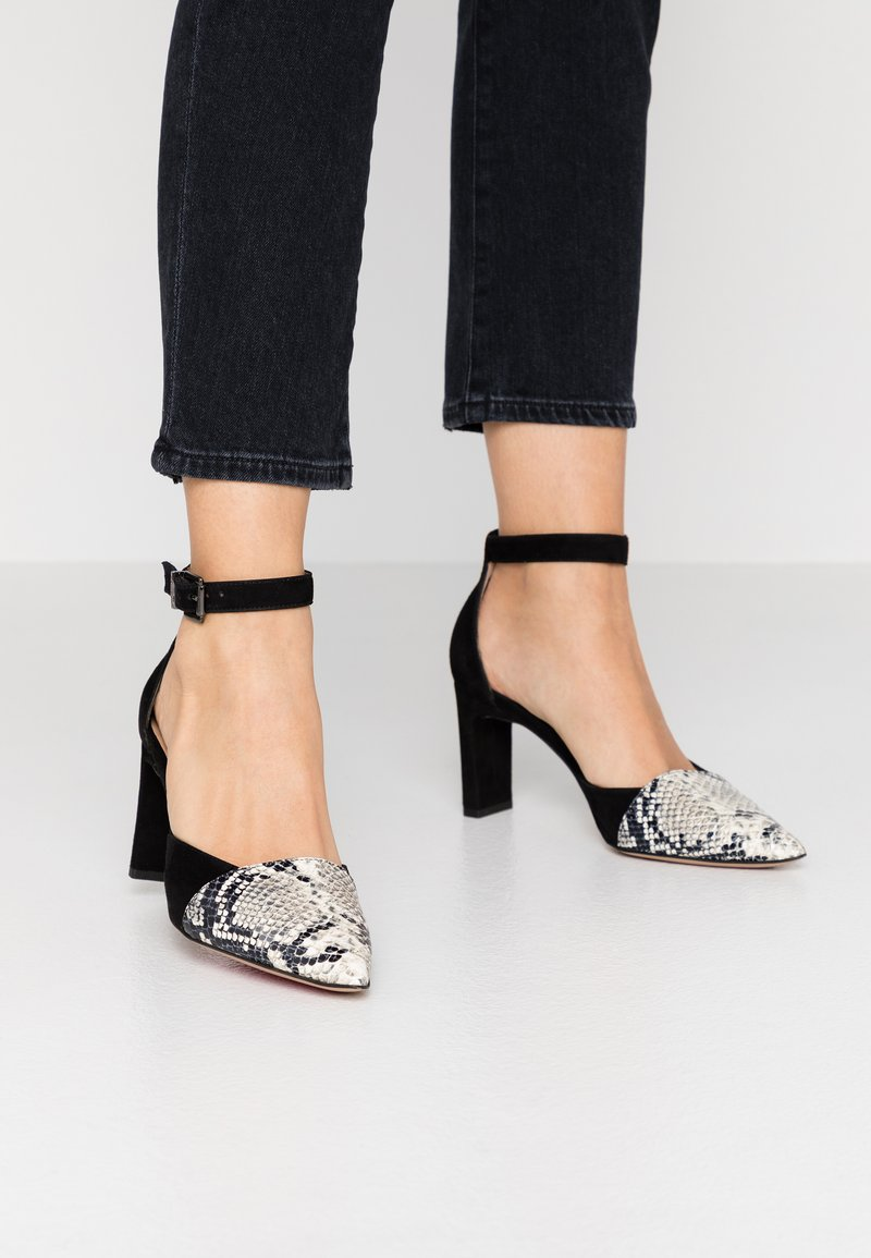 PERLATO - Classic heels - grigio/noir