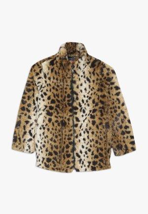 MAEVA - Winter jacket - marron