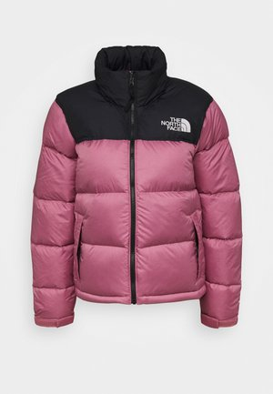 RETRO NUPTSE JACKET - Down jacket - mesa rose
