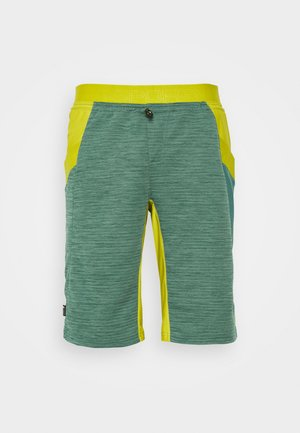 FORCE SHORT - Outdoor shorts - pine/kiwi