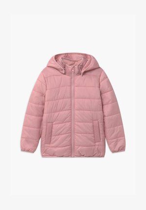 MINI FLEUR - Winter jacket - dusty pink
