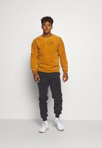 Burton - WESTMATE CREW - Sweat polaire - true penny - 1