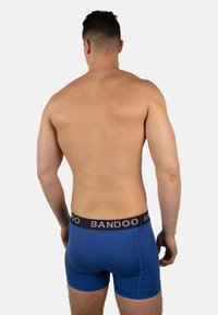 Bandoo Underwear - 2PACK - Pants - navy blue, cobalt blue - 3