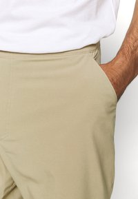 The North Face - PARAMOUNT ACTIVE - Träningsshorts - beige - 3