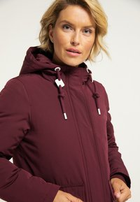 ICEBOUND - Winter jacket - bordeaux - 3