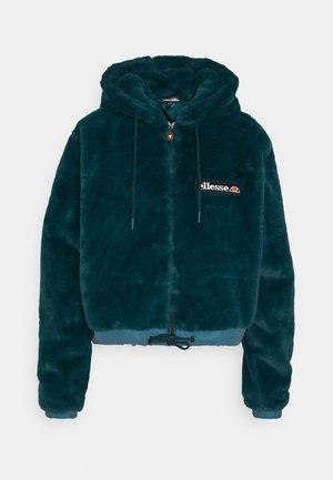 REIDI TEDDY JACKET - Winter jacket - teal