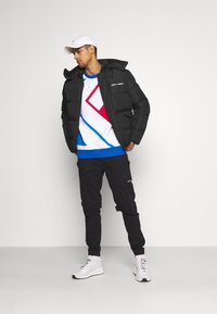 Night Addict - Winter jacket - black - 1